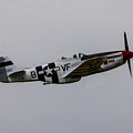P-51d Mustang by Tommy Anderson