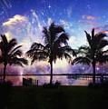 Palm Trees by Skip Nall