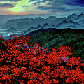 Paradise by Stan Hamilton