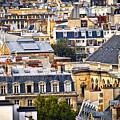 Paris Rooftops by Elena Elisseeva