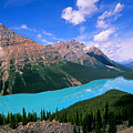 Peyto Lake, Banff National Park by Buddy Mays
