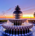 Pineapple Fountain Charleston Sc Sunrise by Dustin K Ryan