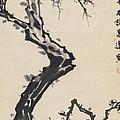 Plum Blossom by Zhang Daqian