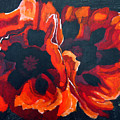 2 Poppies by Richard Le Page