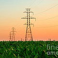 Power Lines by George Mattei