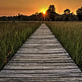 Prairie Boardwalk Sunset by Michael Shake