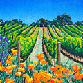 Presidio Vineyard by Angie Hamlin