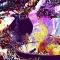 Robin Erithacus Rubecula Bird  by PixBreak Art