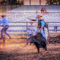 Rodeo Rider by LeeAnn McLaneGoetz McLaneGoetzStudioLLCcom