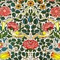 Rose Design by William Morris