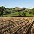Rural Mid Devon by Pete Hemington