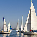 Sailboat Race by Tom Dowd