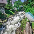Salmon Hatchery Creek In Mountains Of Alaska by Alex Grichenko