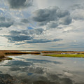 Salt Water Marsh by Rick Mosher