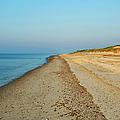 Sandy Neck Beach by Charles Harden