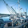 Scenery Around Monterey Bay California In Spring by Alex Grichenko