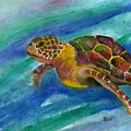Sea Turtle by Bev Veals