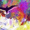 Seagull Blue Sky Freedom Air Fly  by PixBreak Art
