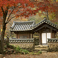 Seonamsa In Autumn by Michele Burgess