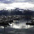 Seward Harbor by Phyllis Taylor