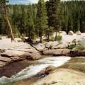 Sierra Nevada Mountain Stream by Ted Pollard
