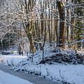 Snowtime by Valia Bradshaw