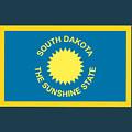 South Dakota Flag by Frederick Holiday
