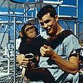 Space: Chimpanzee, 1961 by Granger