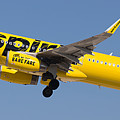 Spirit Airline by Dart and Suze Humeston