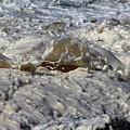 Splash Of A Momenary Water Sculpture by Wernher Krutein