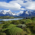 Springtime In Patagonia by Michele Burgess