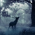 Stag by FL collection