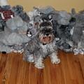 Stuffed Animals by Rob Hans