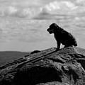 Summit Silhouette by Ken Stampfer