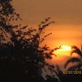 Sun View by Rajesh Kumawat