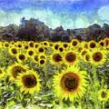 Sunflowers Van Gogh by David Pyatt