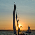 Sunset Sailing by Tom Dowd