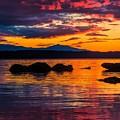 Sunset by Sarah Waldman