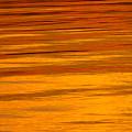 Sunset by Silke Magino