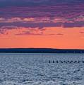 Sunset by Steven Natanson