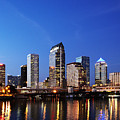 Tampa Skyline by Skip Nall