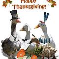 Thanksgiving Ducks by Gravityx9 Designs
