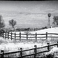 The Corral by Jim Garrison