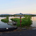 The River Suir by Joe Cashin