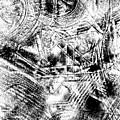 The Web by Tom Gowanlock