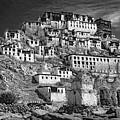 Thiksey Monastery by Steve Harrington