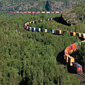 Train by Dorothy Binder
