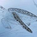 Turtle by Sherri Gill