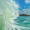 Venice Surf by Martin Wolfe
