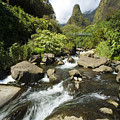View Of Iao Needle by Ron Dahlquist - Printscapes
